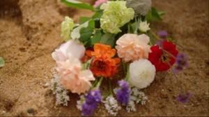 fiori danny