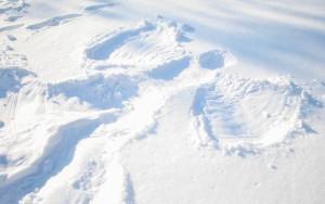Make-a-Snow-Angel-Step-5