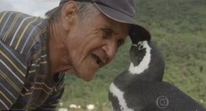 Dindim-pinguino-1-300x162