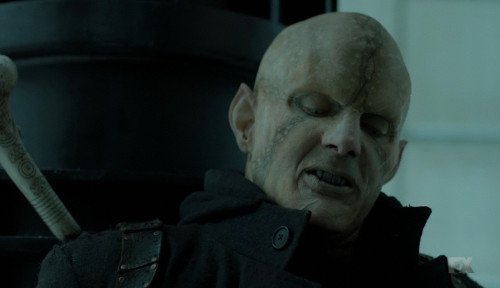 the strain Quinlan