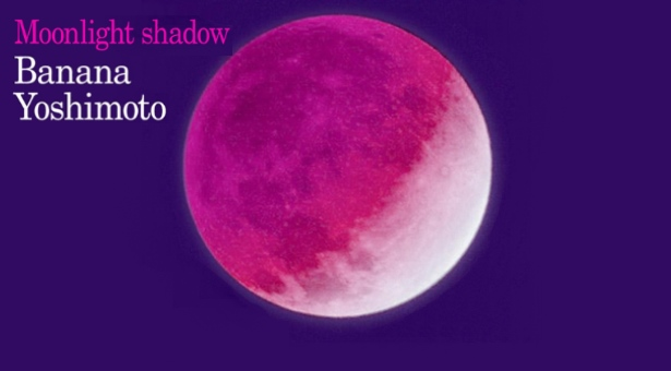 Moonlight Shadow  – Un'originale elaborazione del lutto