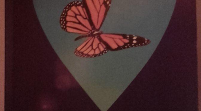 """Intervista a Lionella Pieris, Autrice del libro: """"La felicità è farfalla""""."""